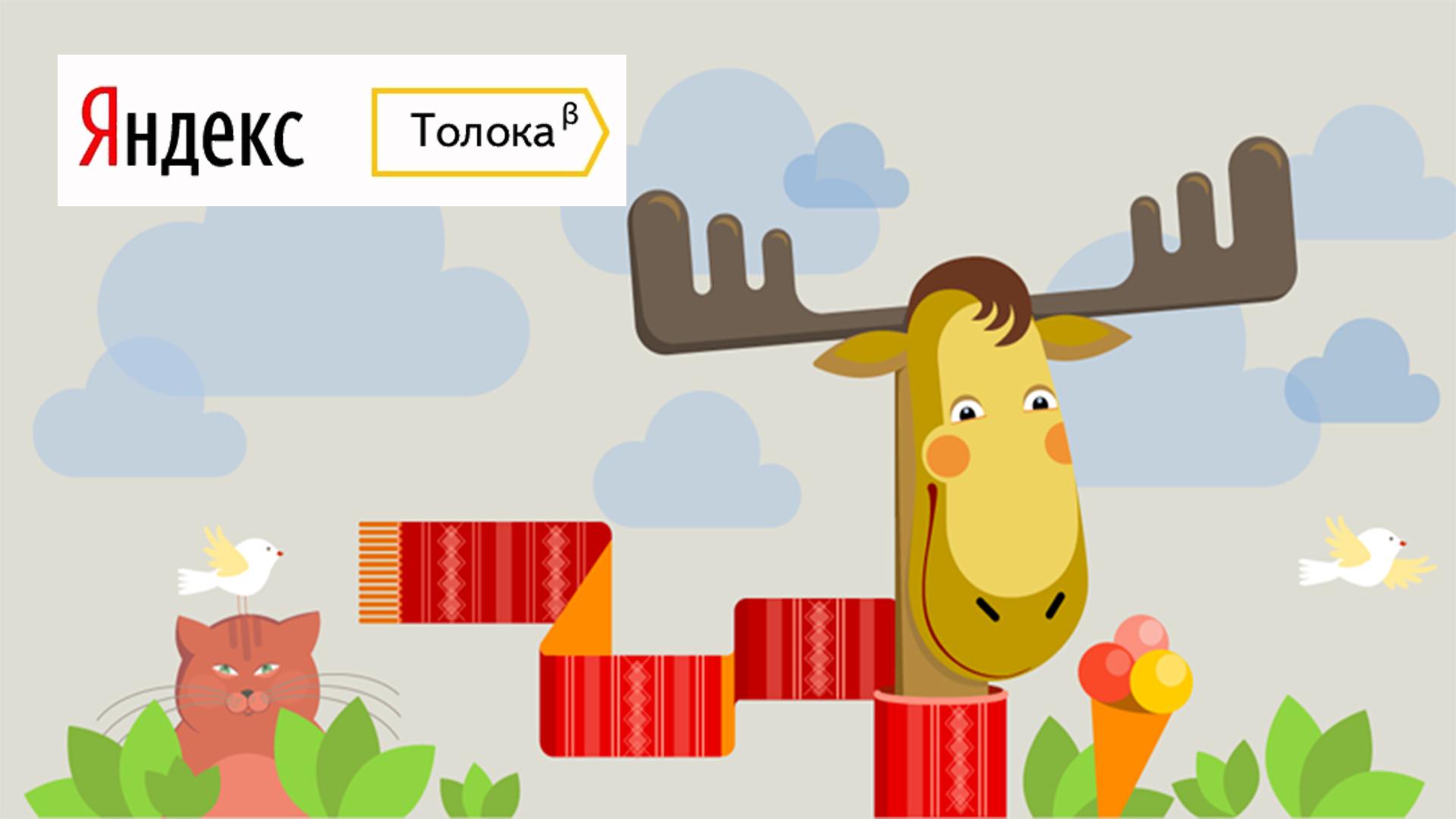 Яндекс.Толока - сколько можно заработать